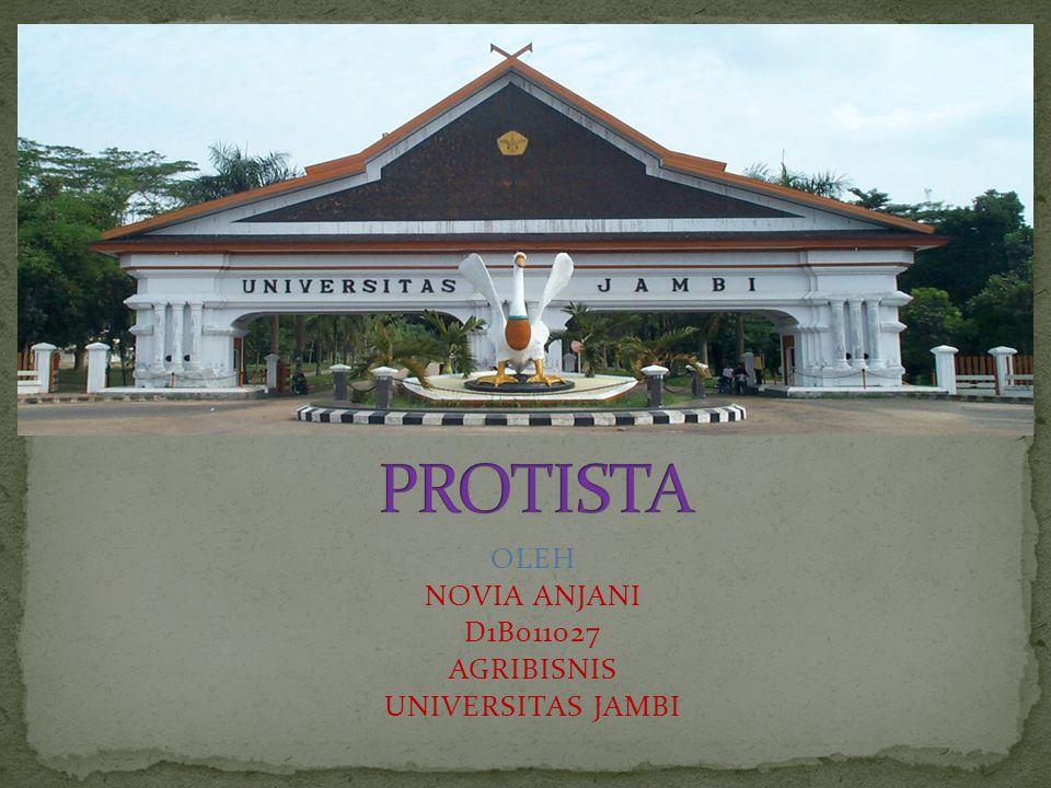 PROTISTA Protista merupakan organisme eukariotik uniseluler yang hidup soliter atau berkoloni.