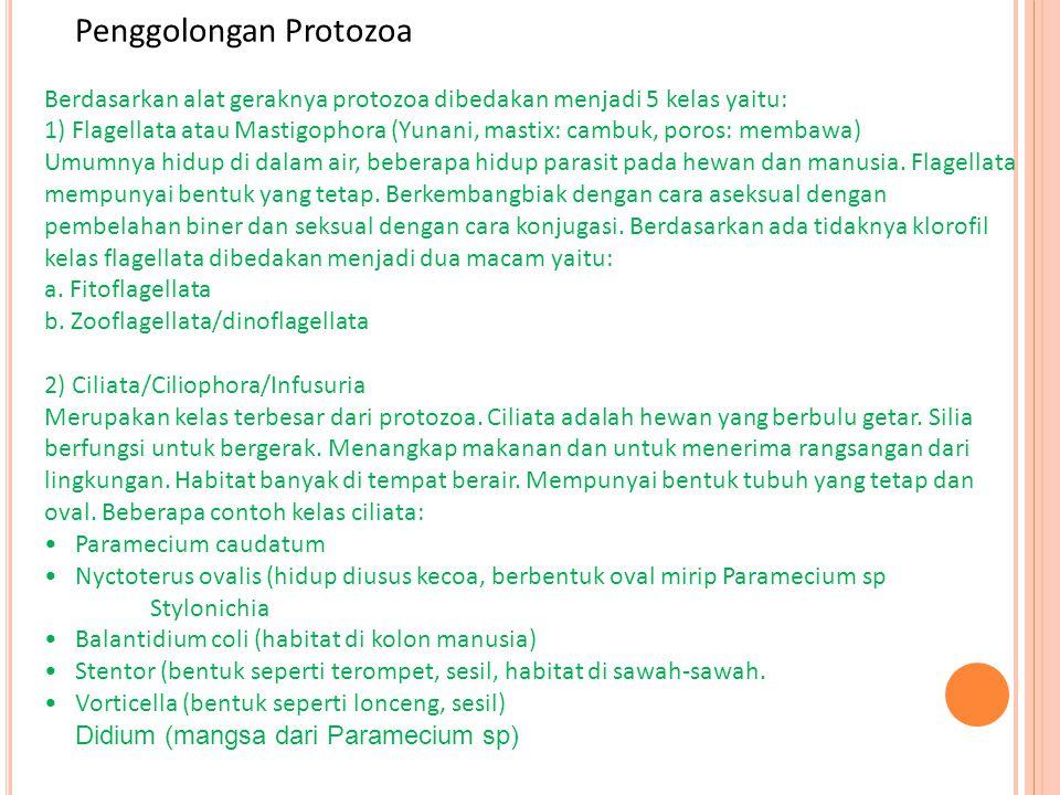 Penggolongan Protozoa Berdasarkan alat geraknya protozoa dibedakan menjadi 5 kelas yaitu: 1) Flagellata atau Mastigophora (Yunani, mastix: cambuk, por