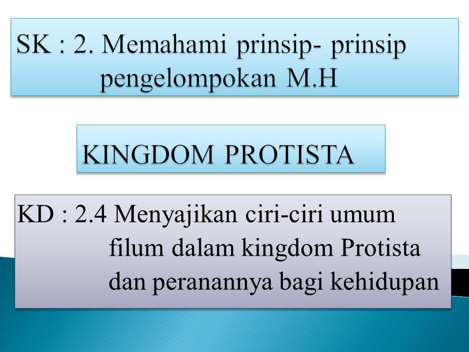 KD : 2.4 Menyajikan ciri-ciri umum filum dalam kingdom Protista dan peranannya bagi kehidupan KD : 2.4 Menyajikan ciri-ciri umum filum dalam kingdom Protista dan peranannya bagi kehidupan