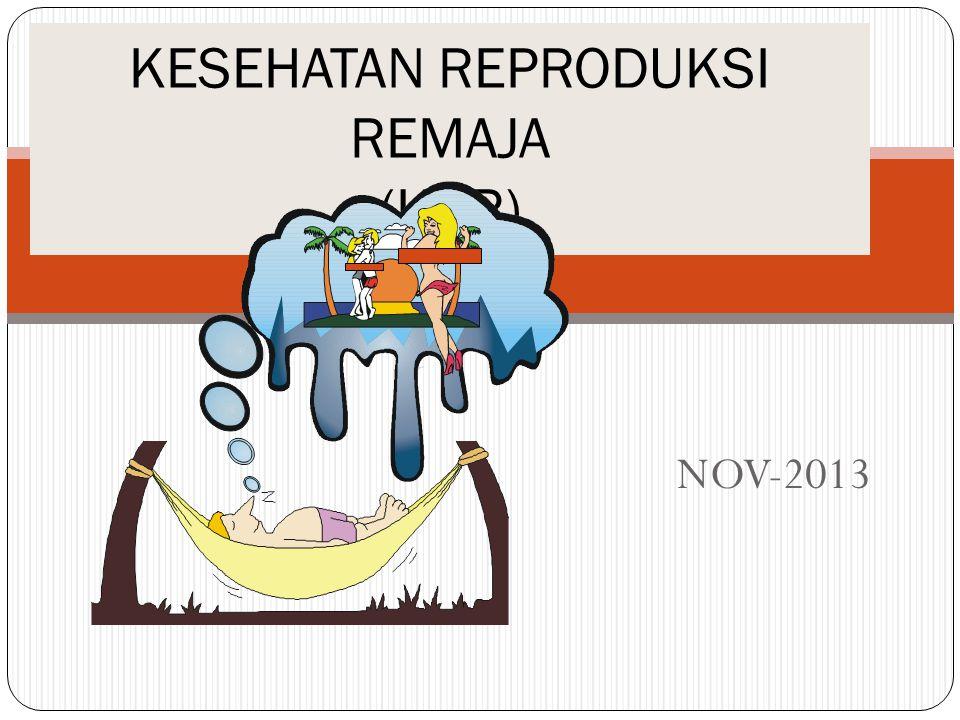 NOV-2013 KESEHATAN REPRODUKSI REMAJA (KRR)