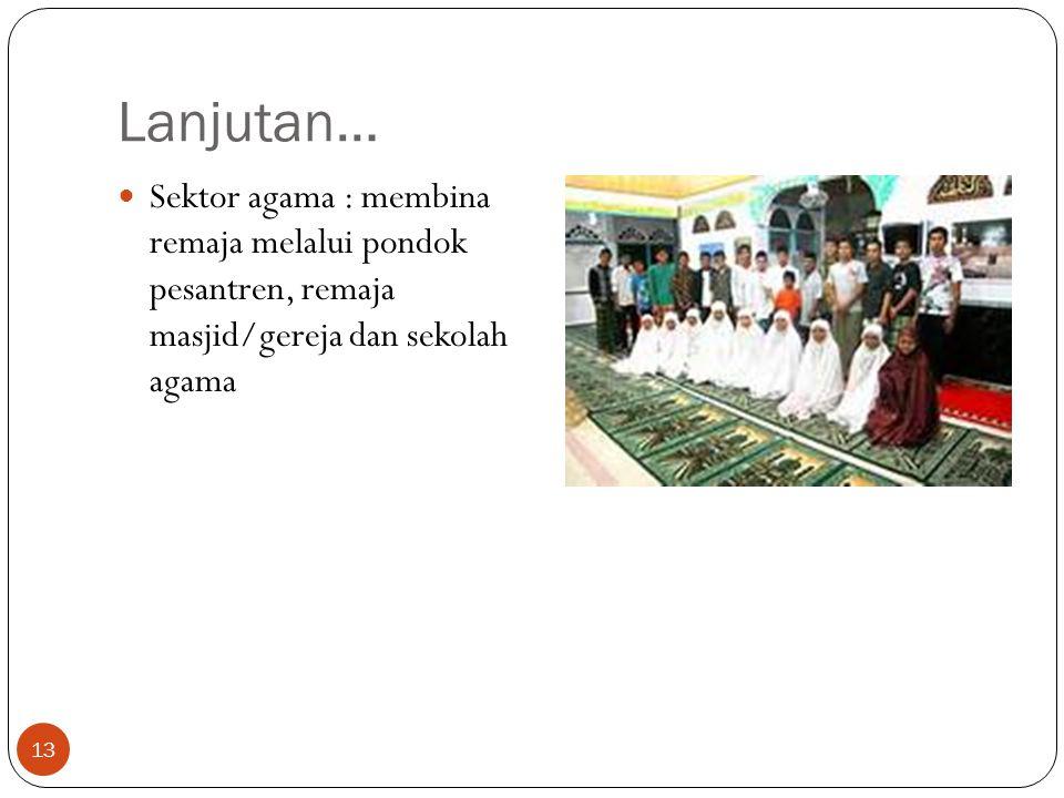 Lanjutan… Sektor agama : membina remaja melalui pondok pesantren, remaja masjid/gereja dan sekolah agama 13