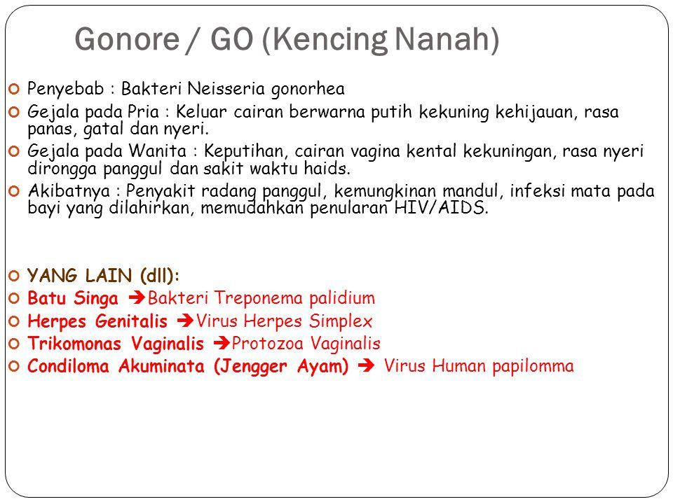 Gonore / GO (Kencing Nanah) 38 Penyebab : Bakteri Neisseria gonorhea Gejala pada Pria : Keluar cairan berwarna putih kekuning kehijauan, rasa panas, g