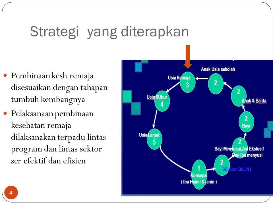 Strategi yang diterapkan Pembinaan kesh remaja disesuaikan dengan tahapan tumbuh kembangnya Pelaksanaan pembinaan kesehatan remaja dilaksanakan terpad