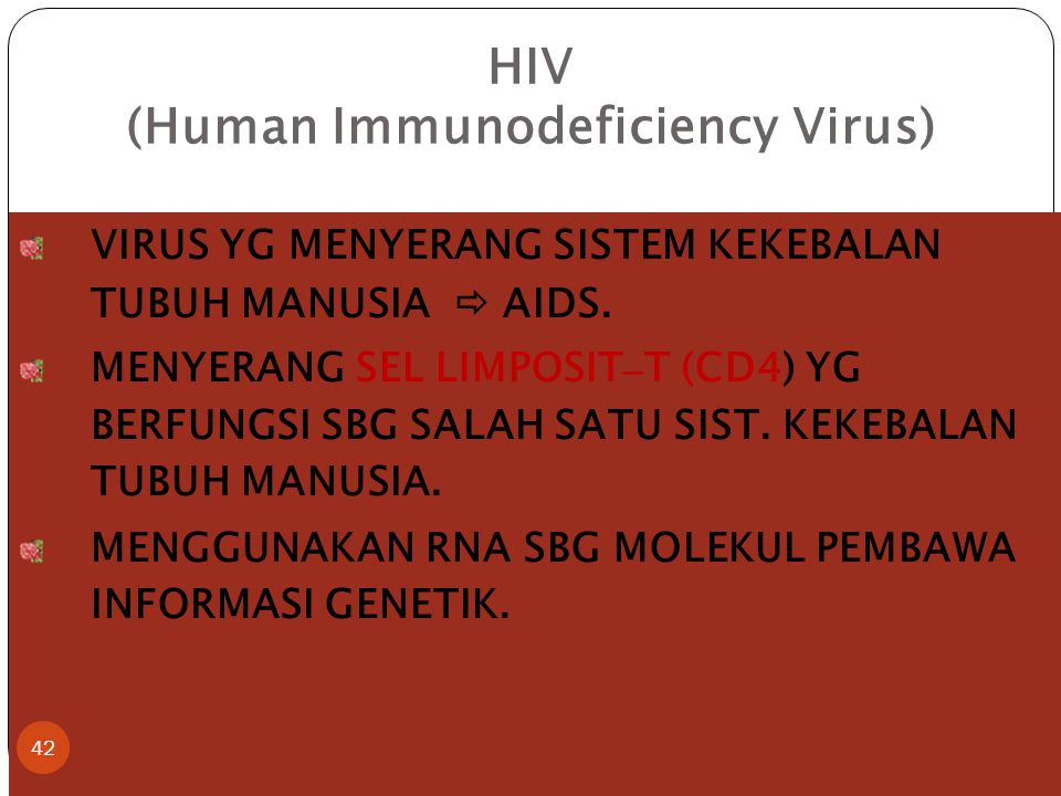 HIV (Human Immunodeficiency Virus) VIRUS YG MENYERANG SISTEM KEKEBALAN TUBUH MANUSIA  AIDS. MENYERANG SEL LIMPOSIT – T (CD4) YG BERFUNGSI SBG SALAH S