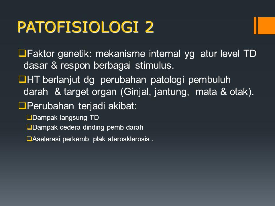 PATOFISIOLOGI 2  Faktor genetik: mekanisme internal yg atur level TD dasar & respon berbagai stimulus.  HT berlanjut dg perubahan patologi pembuluh