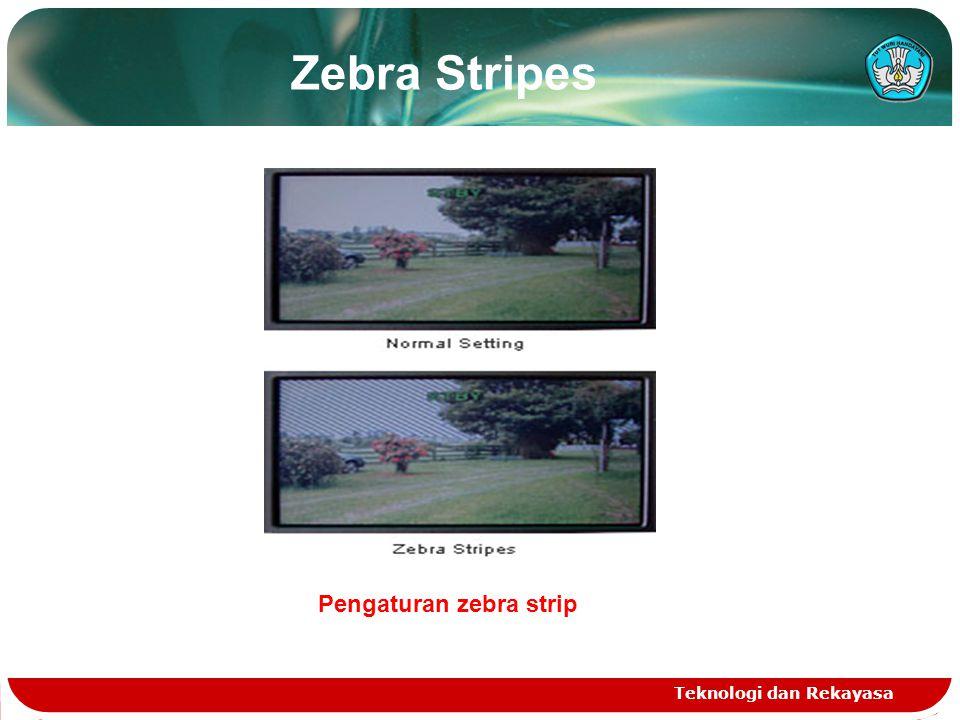 Zebra Stripes Teknologi dan Rekayasa Pengaturan zebra strip