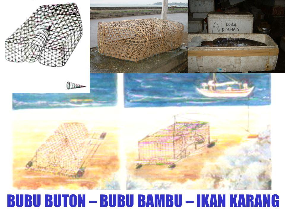 BUBU BUTON – BUBU BAMBU – IKAN KARANG