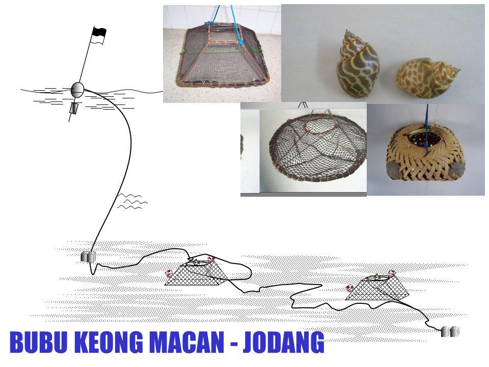 BUBU KEONG MACAN - JODANG