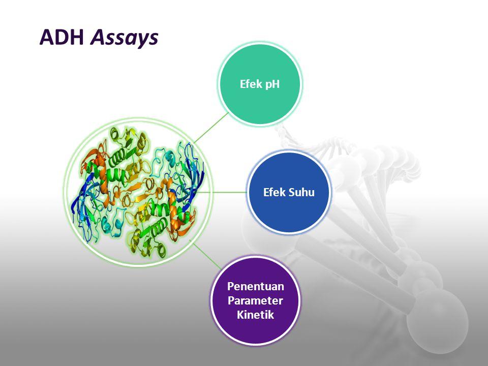 ADH Assays Efek pHEfek Suhu Penentuan Parameter Kinetik