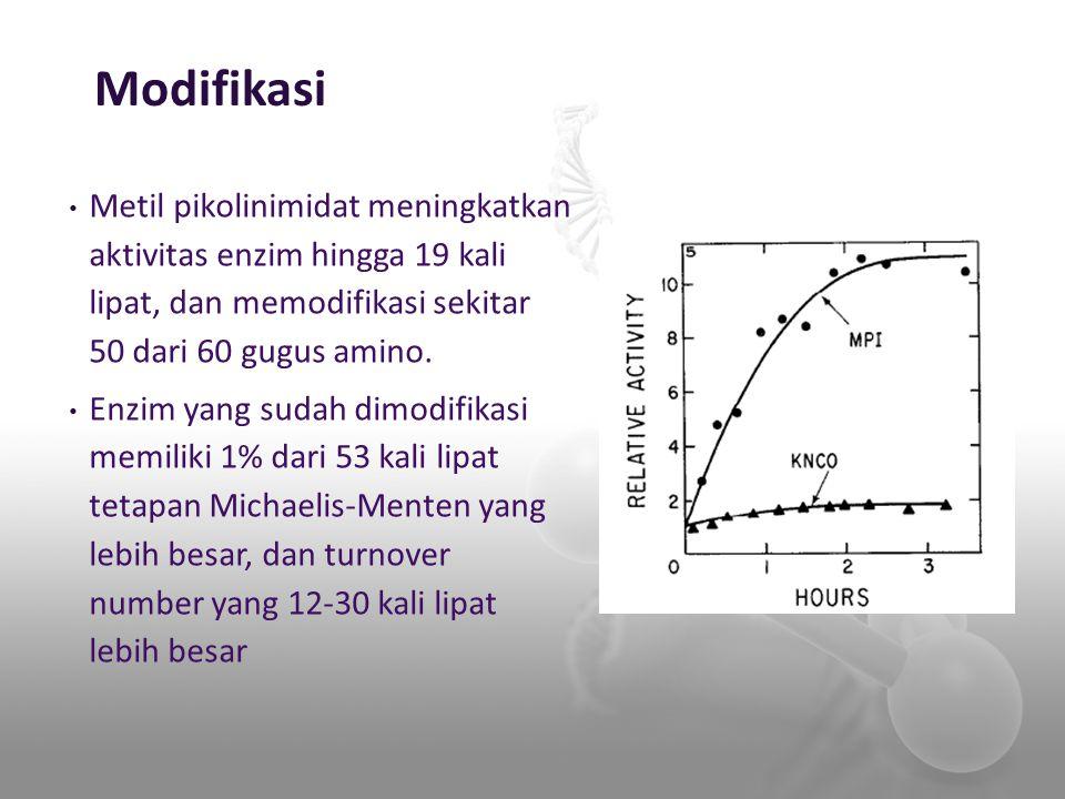 Metil pikolinimidat meningkatkan aktivitas enzim hingga 19 kali lipat, dan memodifikasi sekitar 50 dari 60 gugus amino. Enzim yang sudah dimodifikasi