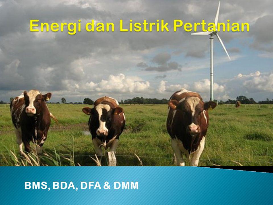 BMS, BDA, DFA & DMM