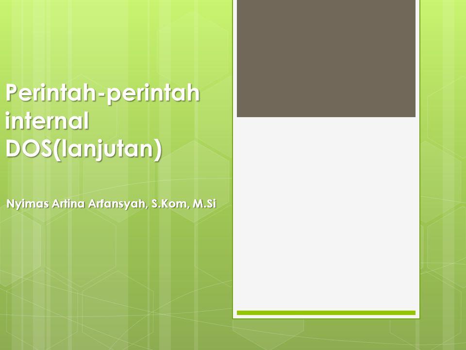 Perintah-perintah internal DOS(lanjutan) Nyimas Artina Arfansyah, S.Kom, M.Si