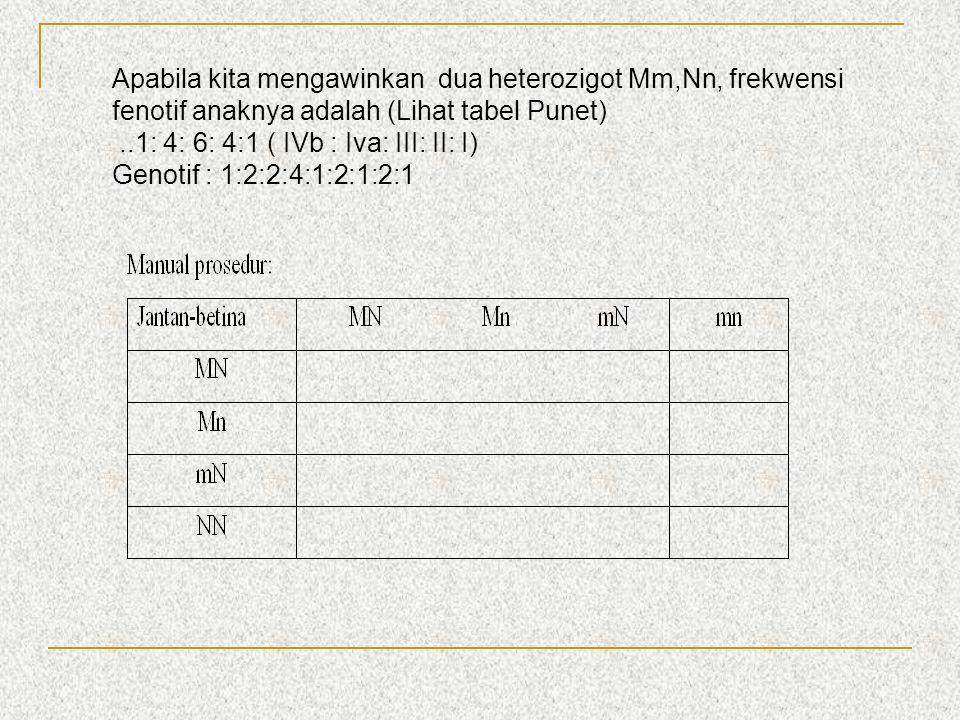 Apabila kita mengawinkan dua heterozigot Mm,Nn, frekwensi fenotif anaknya adalah (Lihat tabel Punet)..1: 4: 6: 4:1 ( IVb : Iva: III: II: I) Genotif :