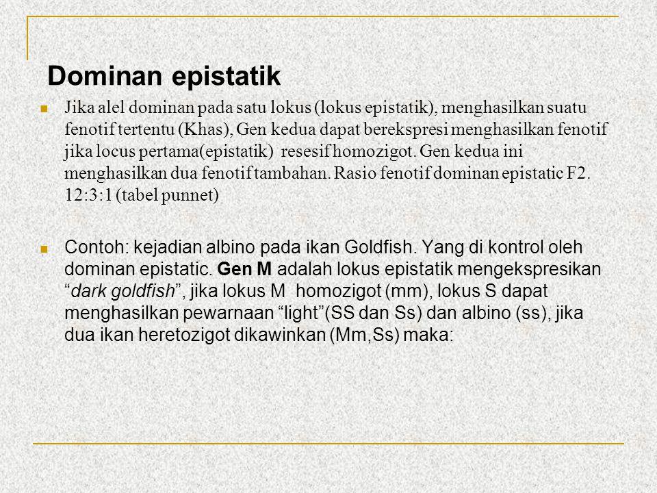 Dominan epistatik Jika alel dominan pada satu lokus (lokus epistatik), menghasilkan suatu fenotif tertentu (Khas), Gen kedua dapat berekspresi menghas