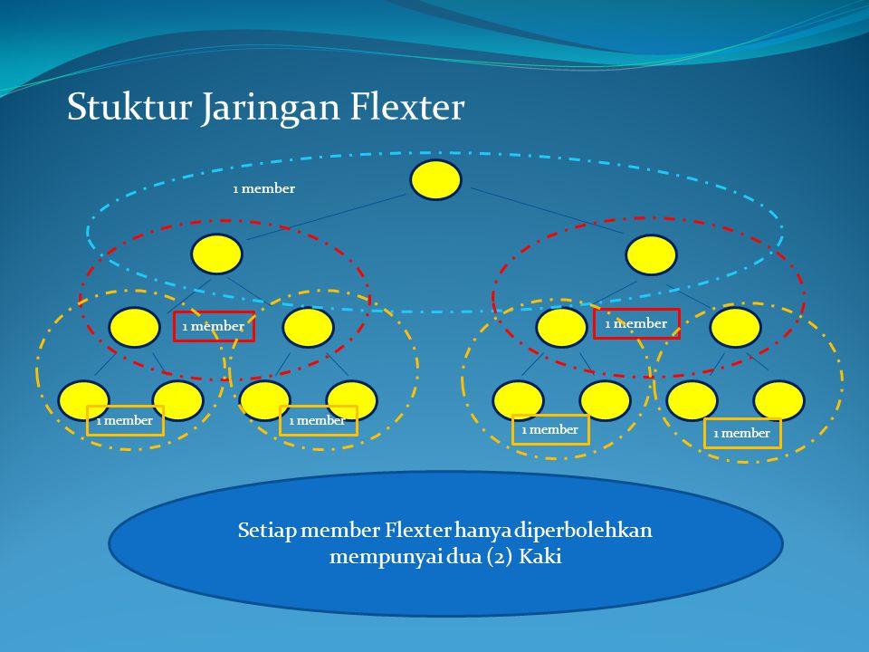 Stuktur Jaringan Flexter Setiap member Flexter hanya diperbolehkan mempunyai dua (2) Kaki 1 member