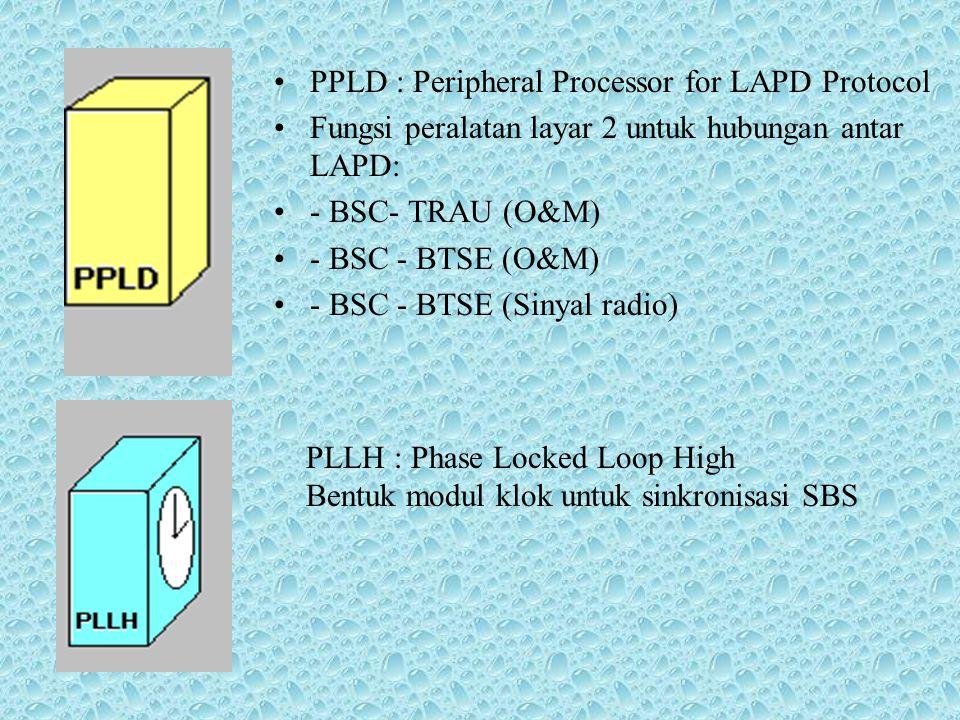 DTLP : Dual Trunk Line Peripheral Interface link untuk hubungan sistem 2 PCM30: BSC - TRAU dan BSC - BTSE secara berurutan PPCC : Peripheral Processor