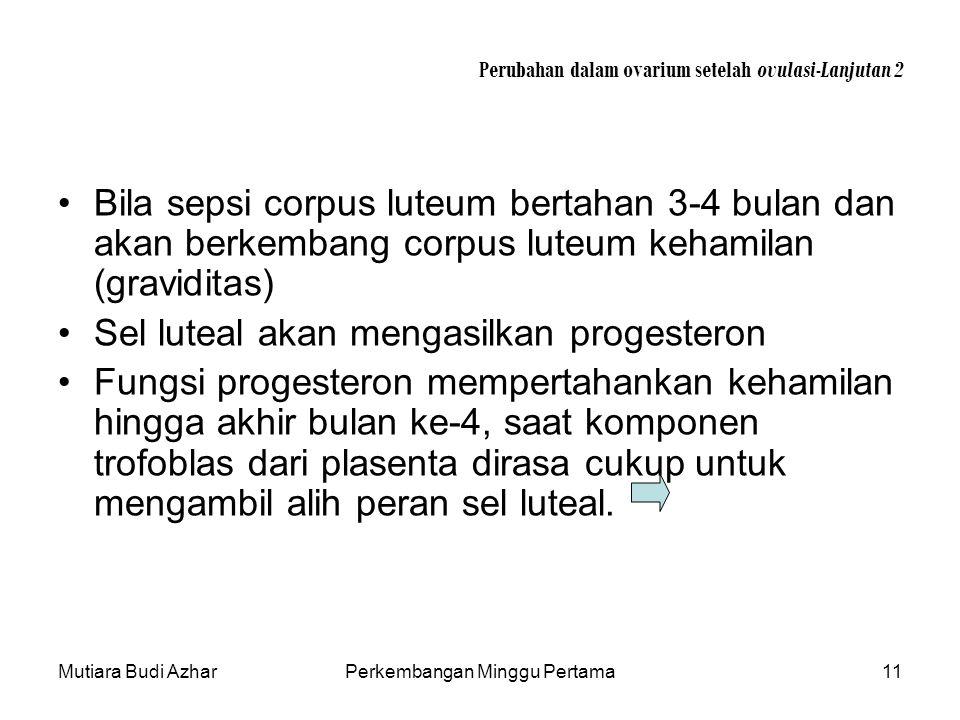 Mutiara Budi AzharPerkembangan Minggu Pertama11 Perubahan dalam ovarium setelah ovulasi-Lanjutan 2 Bila sepsi corpus luteum bertahan 3-4 bulan dan aka