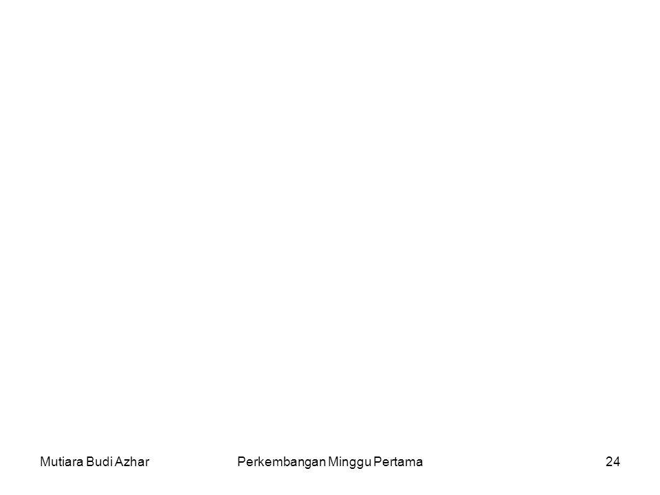 Mutiara Budi AzharPerkembangan Minggu Pertama24