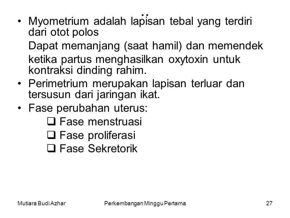 Mutiara Budi AzharPerkembangan Minggu Pertama27.. Myometrium adalah lapisan tebal yang terdiri dari otot polos Dapat memanjang (saat hamil) dan memend