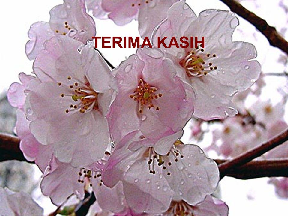Mutiara Budi AzharPerkembangan Minggu Pertama29 TERIMA KASIH