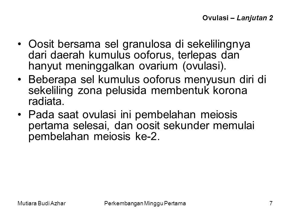 Mutiara Budi AzharPerkembangan Minggu Pertama7 Ovulasi – Lanjutan 2 Oosit bersama sel granulosa di sekelilingnya dari daerah kumulus ooforus, terlepas