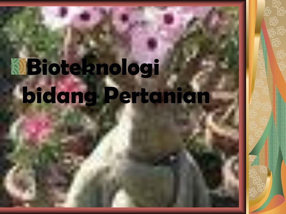 Rekombinasi DNA Rekombinasi DNA adalah proses penggabungan DNA-DNA dari sumber yang berbeda.