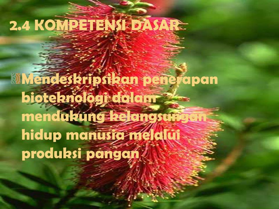 2.STANDAR KOMPETENSI Memahami kelangsungan hidup makhluk hidup