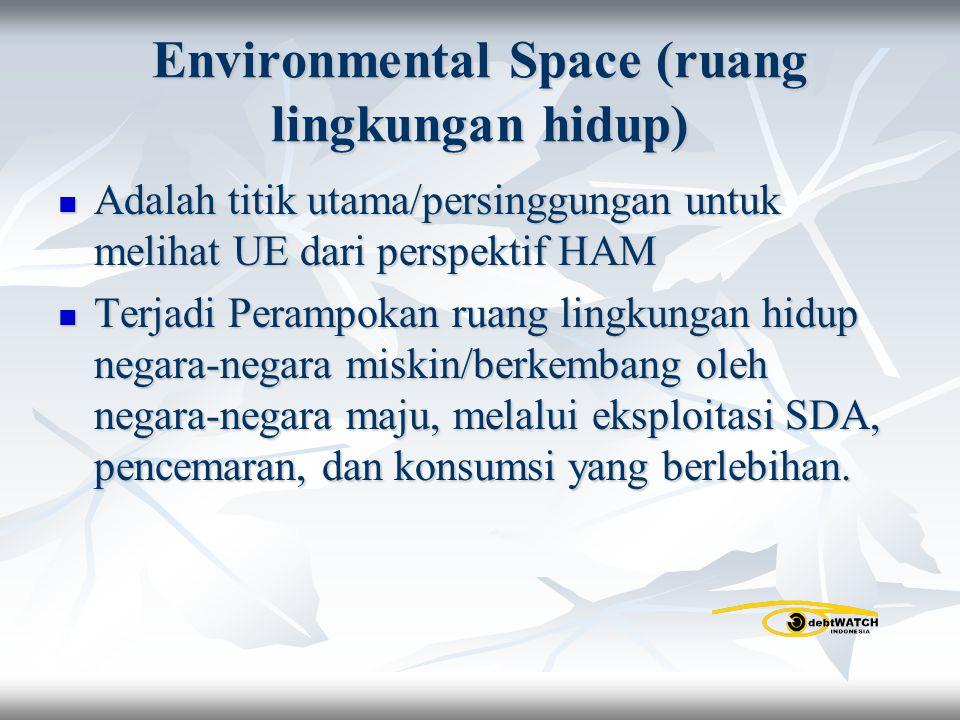 Environmental Space (ruang lingkungan hidup) Adalah titik utama/persinggungan untuk melihat UE dari perspektif HAM Adalah titik utama/persinggungan un
