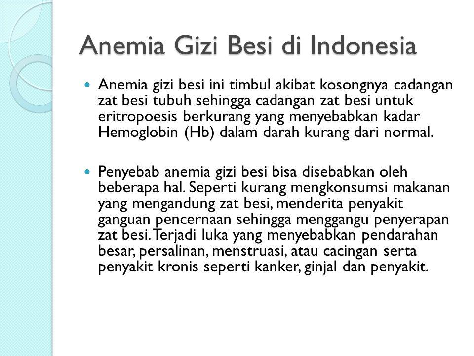 Anemia Gizi Besi di Indonesia Anemia gizi besi ini timbul akibat kosongnya cadangan zat besi tubuh sehingga cadangan zat besi untuk eritropoesis berku