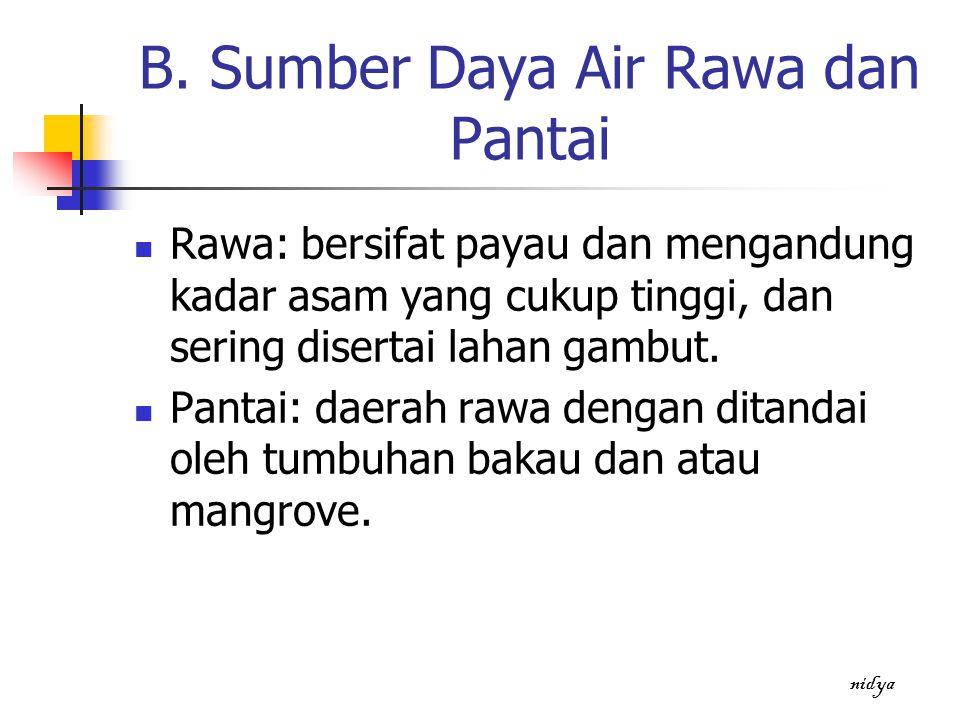 B. Sumber Daya Air Rawa dan Pantai Rawa: bersifat payau dan mengandung kadar asam yang cukup tinggi, dan sering disertai lahan gambut. Pantai: daerah