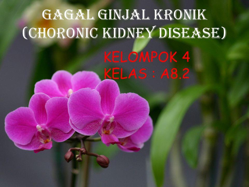 GAGAL GINJAL KRONIk (CHORONIC KIDNEY DISEASE) KELOMPOK 4 KELAS : A8.2