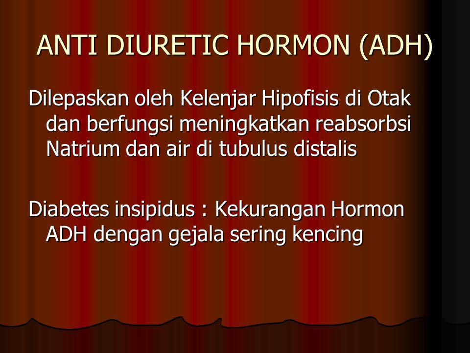 ANTI DIURETIC HORMON (ADH) Dilepaskan oleh Kelenjar Hipofisis di Otak dan berfungsi meningkatkan reabsorbsi Natrium dan air di tubulus distalis Diabet