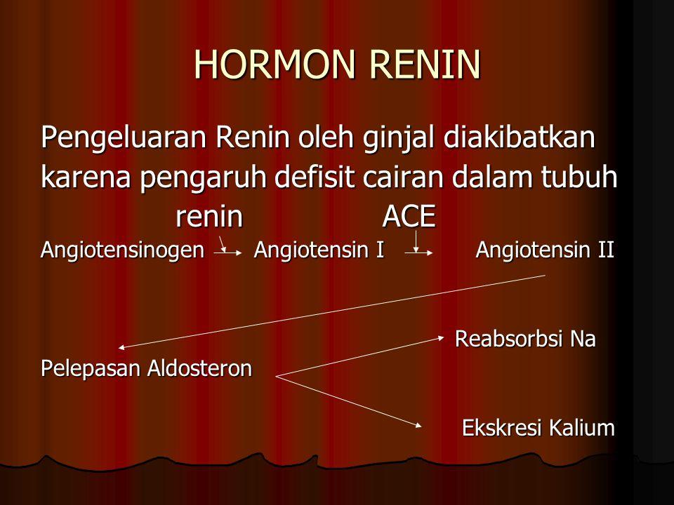 HORMON RENIN Pengeluaran Renin oleh ginjal diakibatkan karena pengaruh defisit cairan dalam tubuh renin ACE Angiotensinogen Angiotensin I Angiotensin