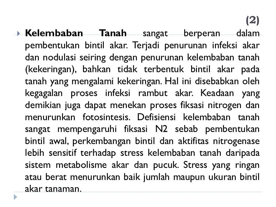 (2)  Kelembaban Tanah sangat berperan dalam pembentukan bintil akar. Terjadi penurunan infeksi akar dan nodulasi seiring dengan penurunan kelembaban