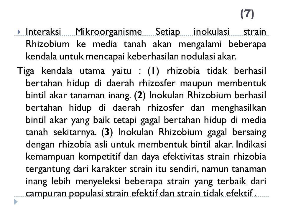 (7)  Interaksi Mikroorganisme Setiap inokulasi strain Rhizobium ke media tanah akan mengalami beberapa kendala untuk mencapai keberhasilan nodulasi a