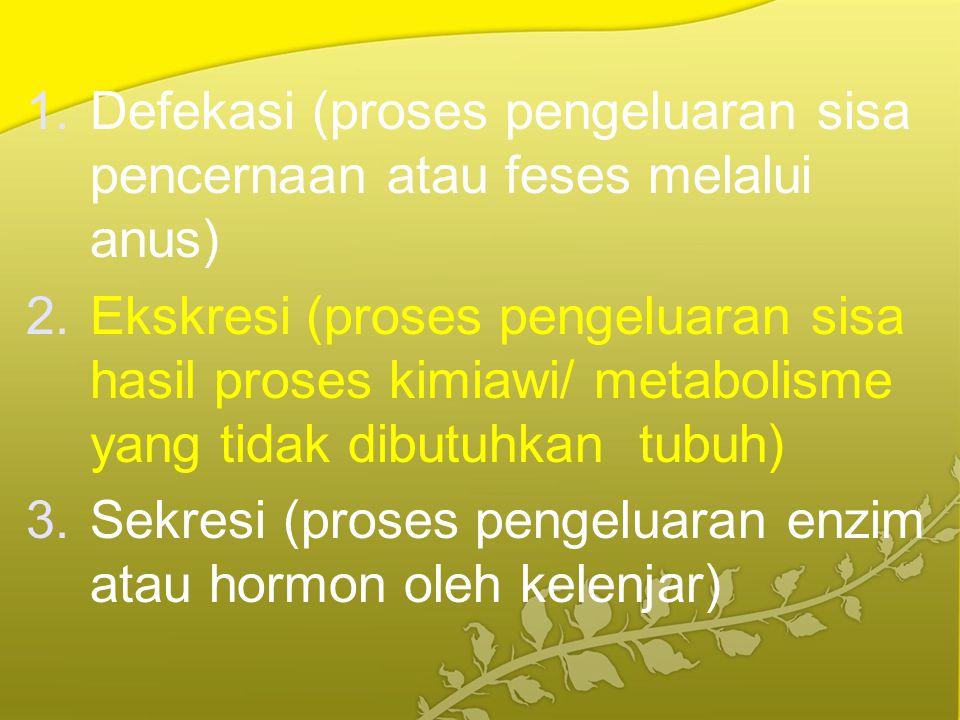 1.Defekasi (proses pengeluaran sisa pencernaan atau feses melalui anus) 2.Ekskresi (proses pengeluaran sisa hasil proses kimiawi/ metabolisme yang tid