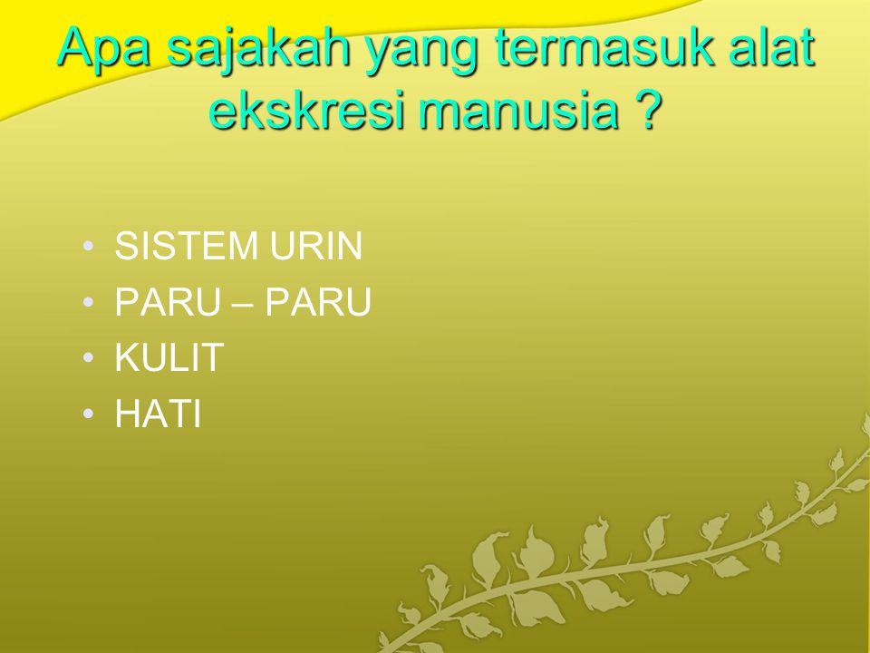 A.SISTEM URIN (SISTEM URINARIA ) 1. GINJAL TERDIRI DARI a.