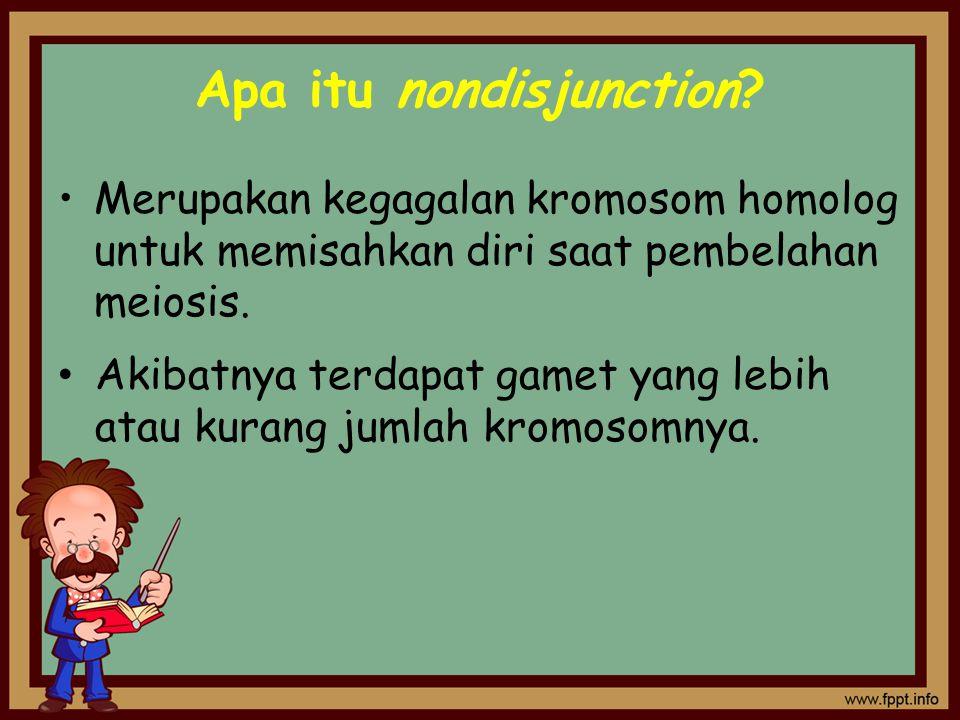 Apa itu nondisjunction? Merupakan kegagalan kromosom homolog untuk memisahkan diri saat pembelahan meiosis. Akibatnya terdapat gamet yang lebih atau k