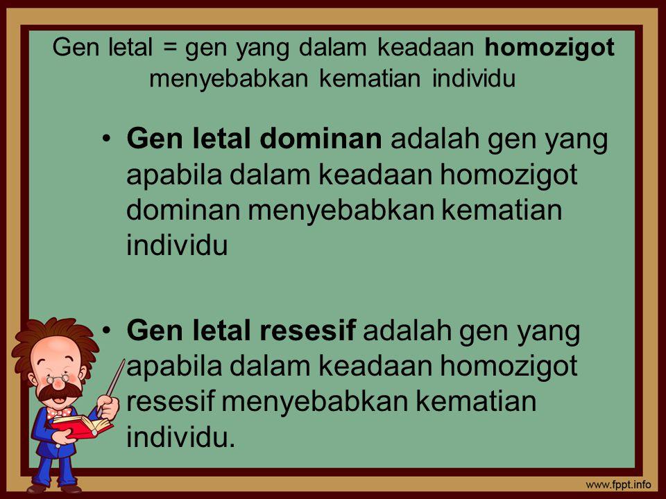 Gen letal = gen yang dalam keadaan homozigot menyebabkan kematian individu Gen letal dominan adalah gen yang apabila dalam keadaan homozigot dominan menyebabkan kematian individu Gen letal resesif adalah gen yang apabila dalam keadaan homozigot resesif menyebabkan kematian individu.