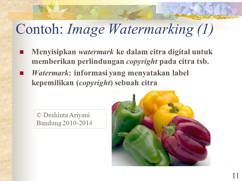 11 Contoh: Image Watermarking (1) Menyisipkan watermark ke dalam citra digital untuk memberikan perlindungan copyright pada citra tsb.