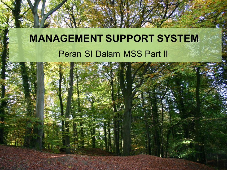 MANAGEMENT SUPPORT SYSTEM Peran SI Dalam MSS Part II