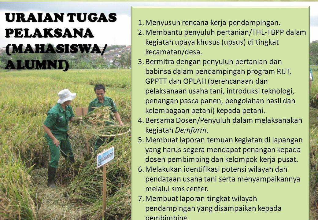 URAIAN TUGAS PELAKSANA (MAHASISWA/ ALUMNI) 17 1.Menyusun rencana kerja pendampingan. 2.Membantu penyuluh pertanian/THL-TBPP dalam kegiatan upaya khusu