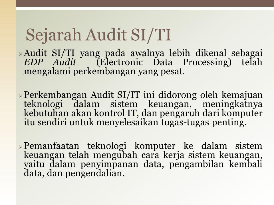 Audit yang berfungsi untuk memeriksa apakah manajemen TI dapat mengembangkan struktur organisasi dan prosedur yang menjamin kontrol dan lingkungan yang berdaya guna untuk pemrosesan informasi.
