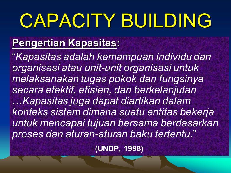 PENGERTIAN CAPACITY Kemampuan individu dan organisasi untuk mencapai kinerja secara efektif dan efisien sesuai tupoksinya.