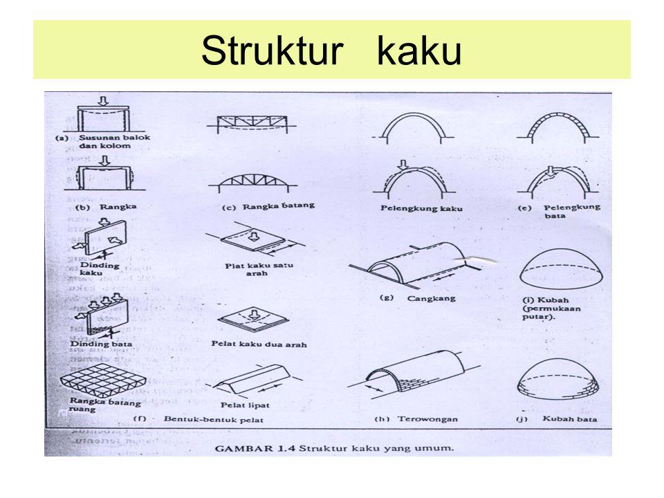 Struktur kaku