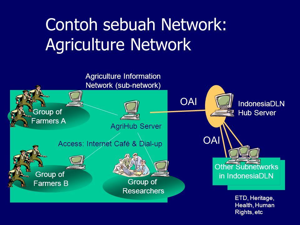 Network-network IndonesiaDLN segera dibangun: Children Network School Network (SD – SMU) Perguruan Tinggi (berdasarkan propinsi) Heritage Network Agri