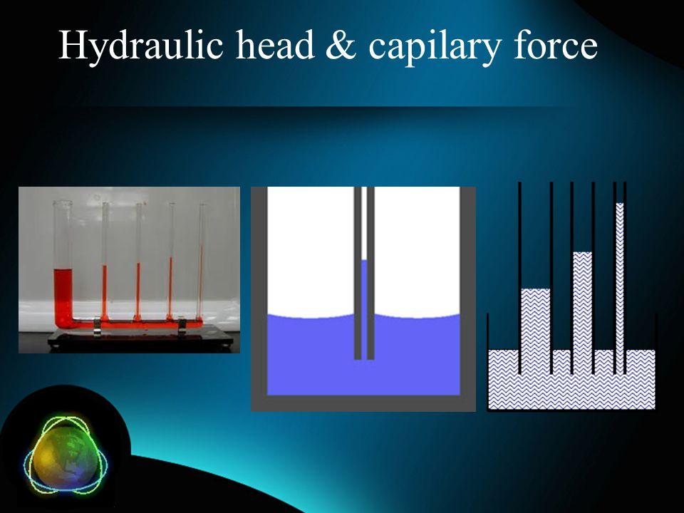 Hydraulic head & capilary force