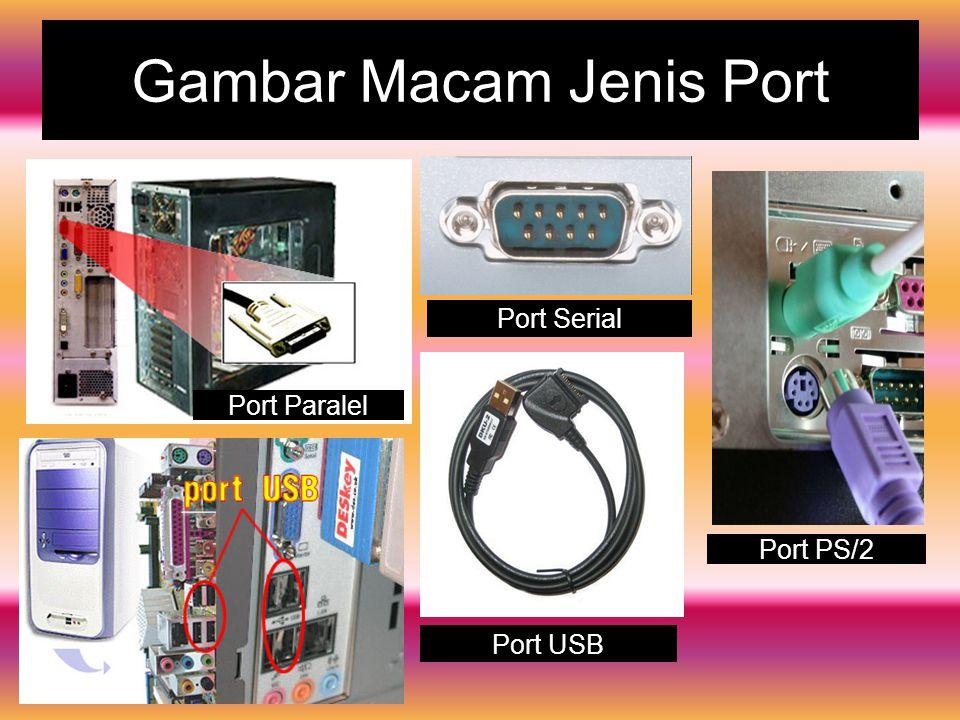 Gambar Macam Jenis Port Port Serial Port USB Port PS/2 Port Paralel