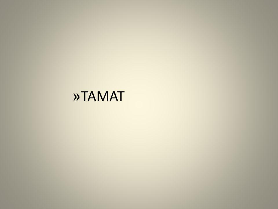 » TAMAT