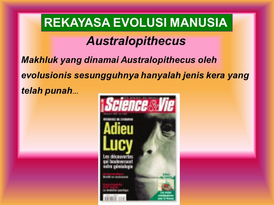 Australopithecus Makhluk yang dinamai Australopithecus oleh evolusionis sesungguhnya hanyalah jenis kera yang telah punah... REKAYASA EVOLUSI MANUSIA